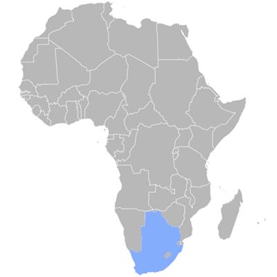Tswana translation agency