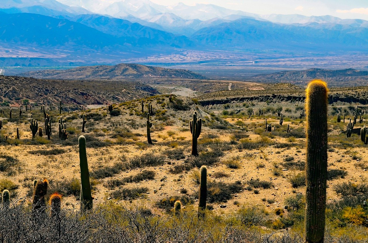 argentina-desert