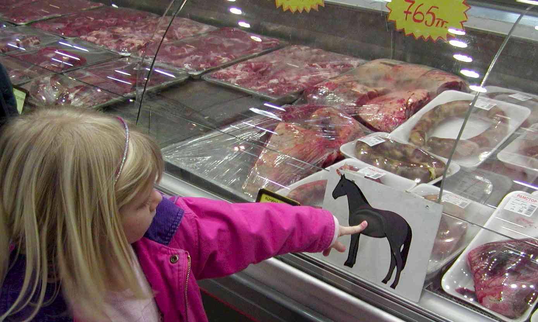 horse-meat-supermarket.jpg