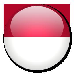 indonesian translation company