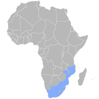 tsonga language translation map