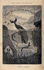 Sea Underwater Book Translation